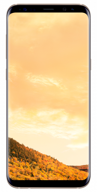 001_GalaxyS8+_Front_Gold.png